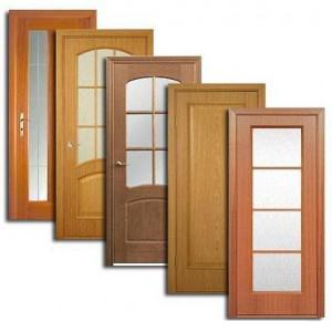 Двери, дверные блоки Болотного