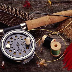 Охотничьи и рыболовные магазины Болотного