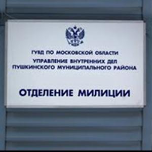 Отделения полиции Болотного